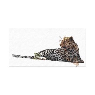 Impressão Em Canvas Leopardo que encontra-se para baixo