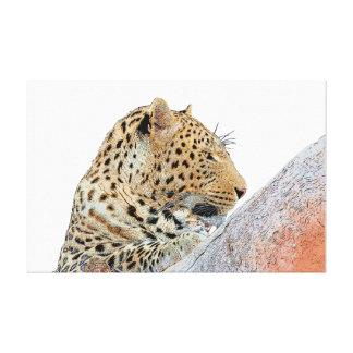 Impressão Em Canvas Leopardo que olha lateralmente