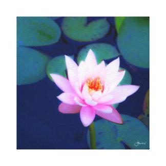 Impressão Em Canvas Lírio de água cor-de-rosa na lagoa do lírio