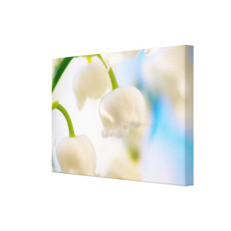 Impressão Em Canvas Lírio do Fim-acima da flor do vale