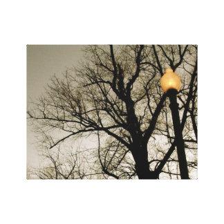 Impressão Em Canvas Luz de rua do centro da árvore