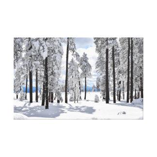 Impressão Em Canvas Maravilha do inverno na arizona