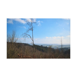 Impressão Em Canvas Natureza nas montanhas
