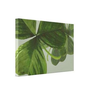 Impressão Em Canvas O trevo verde sae da colagem