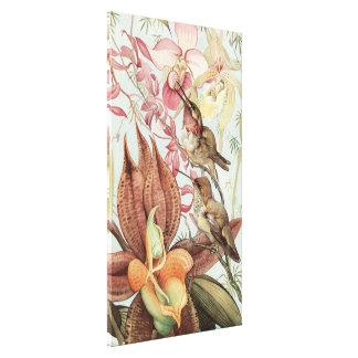 Impressão Em Canvas Orquídeas, flores e colibris tropicais do vintage