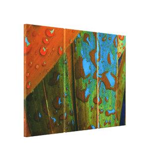 Impressão Em Canvas Os pingos de chuva vão tropicais