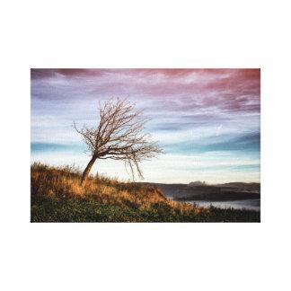 Impressão Em Canvas Paisagem colorida místico e árvore curvada