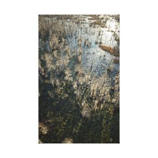Impressão Em Canvas Paisagem grande dos animais selvagens da baía
