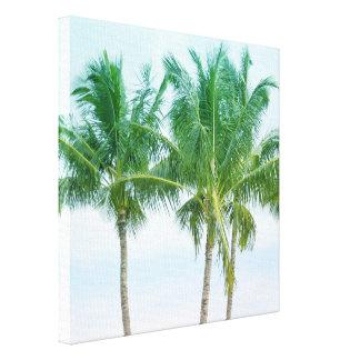 Impressão Em Canvas Palmeiras de Havaí