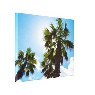Impressão Em Canvas Palmeiras tropicais altas
