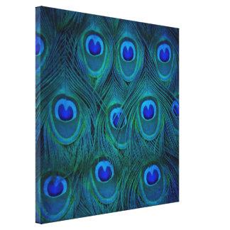 Impressão Em Canvas Pena parisiense do pavão do verde da cerceta do