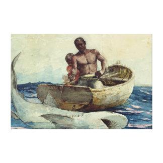 Impressão Em Canvas Pescador do tubarão