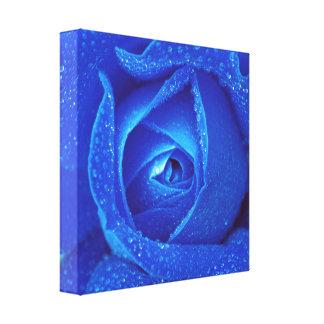 Impressão Em Canvas Pingos de chuva em um rosa azul
