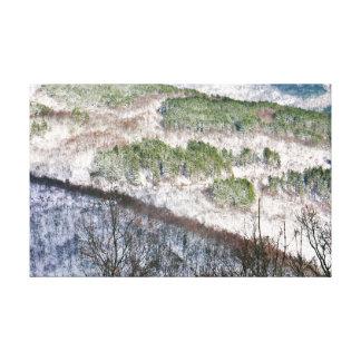 Impressão Em Canvas Piscina norte