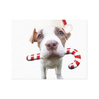 Impressão Em Canvas Pitbull do Natal - pitbull do papai noel - cão de