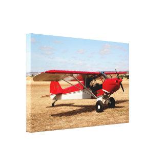 Impressão Em Canvas Plano de Cub do esporte, avião alto da asa