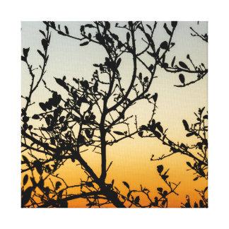 Impressão Em Canvas Por do sol de Austin no inverno