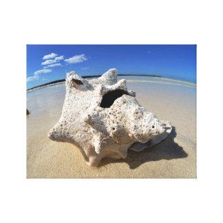 Impressão Em Canvas Praia Shell