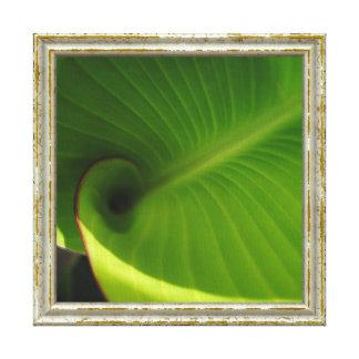 Impressão Em Canvas Redemoinho verde da folha