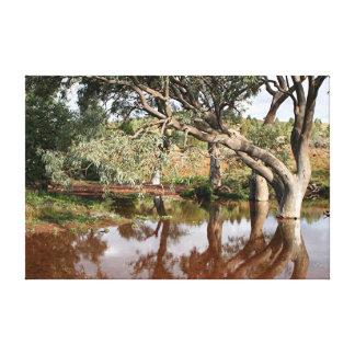 Impressão Em Canvas Reflexões: Angra e gumtrees, escalas do Flinders