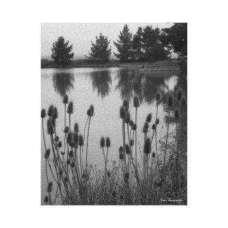 Impressão Em Canvas Regiões pantanosas de Arcata, CA (em preto e