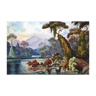Impressão Em Canvas Rio da selva de Ernst Haeckel Ceilão