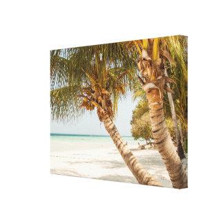 Impressão Em Canvas Sandy Beach e palmeiras brancos