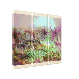 Impressão Em Canvas Succulents de Psychadelic
