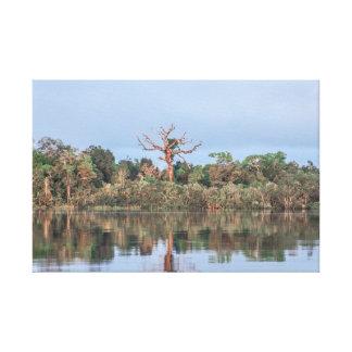 Impressão Em Canvas TerraSub Brazilian Landscapes - Amazon