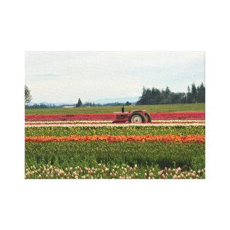 Impressão Em Canvas Trator cor-de-rosa no campo da tulipa