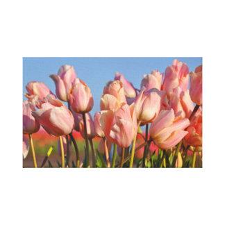 Impressão Em Canvas Tulipas cor-de-rosa do primavera