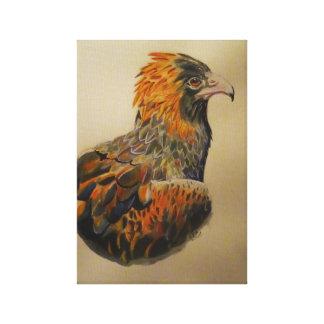 Impressão Em Canvas Um olhar das águias