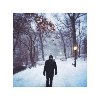 Impressão Em Canvas Um trajeto frio no Central Park