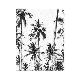 Impressão Em Canvas Verão tropical da palmeira preto e branco