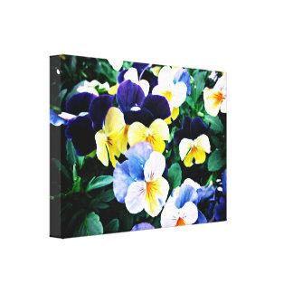 Impressão Em Canvas Viola bonita