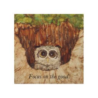 Impressão Em Madeira A coruja espreita para fora da árvore e dá o bom