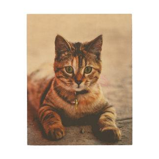 Impressão Em Madeira Animal de estimação novo bonito do gatinho do