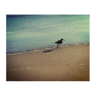 Impressão Em Madeira Ave marinho na praia