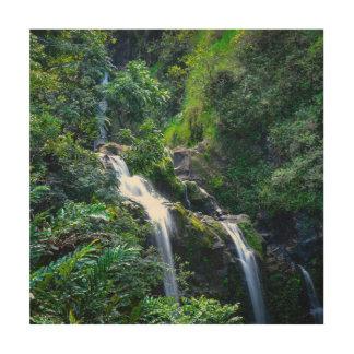 Impressão Em Madeira Cachoeira em Maui Havaí