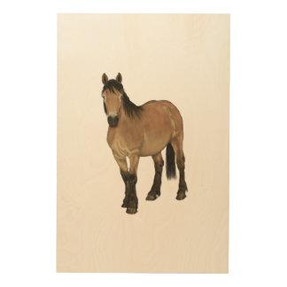 Impressão Em Madeira Cavalo