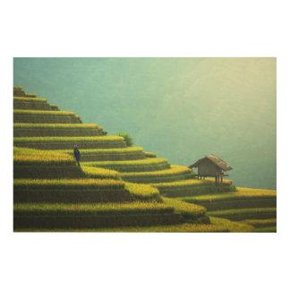 Impressão Em Madeira Colheita do arroz da agricultura de China