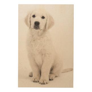 Impressão Em Madeira Filhote de cachorro do golden retriever