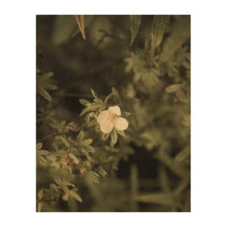 Impressão Em Madeira flor amarela aged1