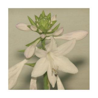 Impressão Em Madeira Flor, cópia de madeira da foto