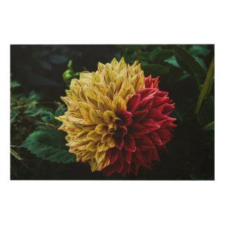 Impressão Em Madeira Flor da dália