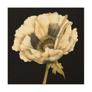Impressão Em Madeira Flor de creme da papoila no fundo preto
