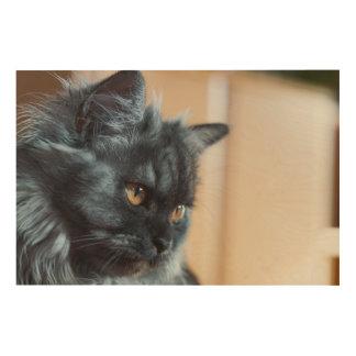 Impressão Em Madeira Gato bonito