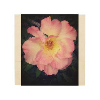 Impressão Em Madeira Madeira cor-de-rosa da flor da arizona