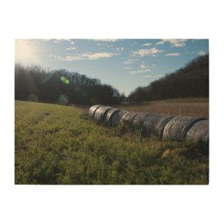 Impressão Em Madeira Pacotes de feno em um campo ensolarado