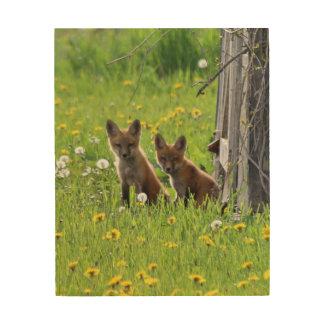 Impressão Em Madeira Pares de jogos da raposa